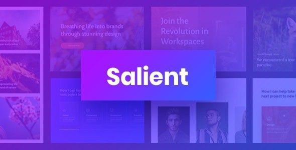 Salient v11.0.4 – Responsive Multi-Purpose Theme